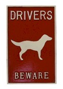 Driver beware of dog