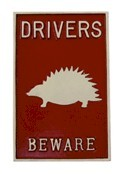 Driver beware of hedgehog